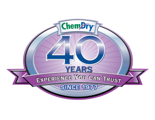 40 years of carpet cleaning experience