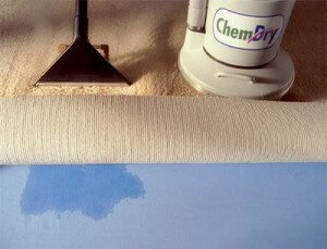The New and Improved Way to Clean Carpets