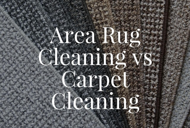 Area Rug Cleaning vs. Carpet Cleaning