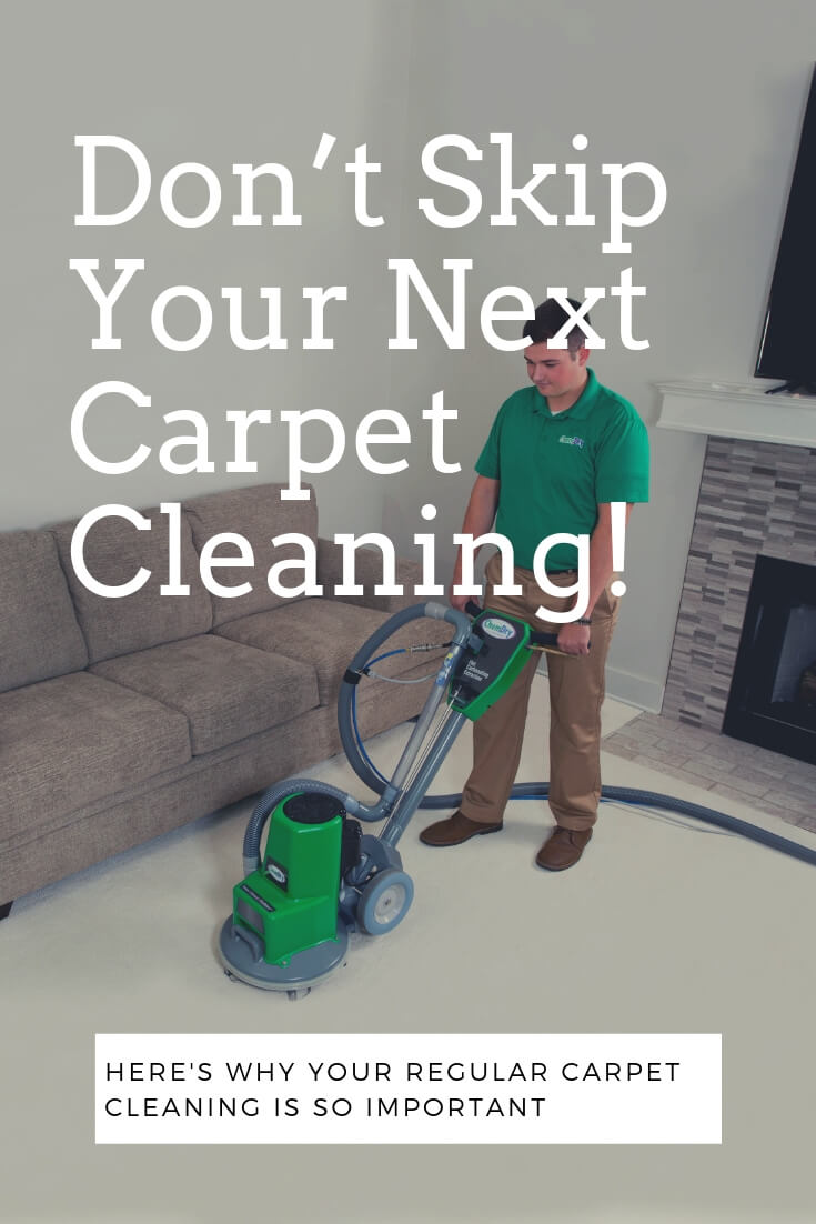 Don't Skip Your Next Carpet Cleaning! here's why