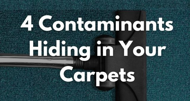 4 Contaminants Hiding in Your Carpets