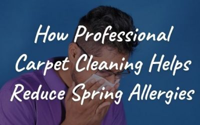 How Professional Carpet Cleaning Helps Reduce Spring Allergies